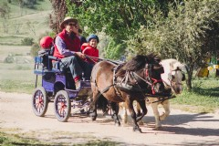 Barcoos Farmstays Bathurst